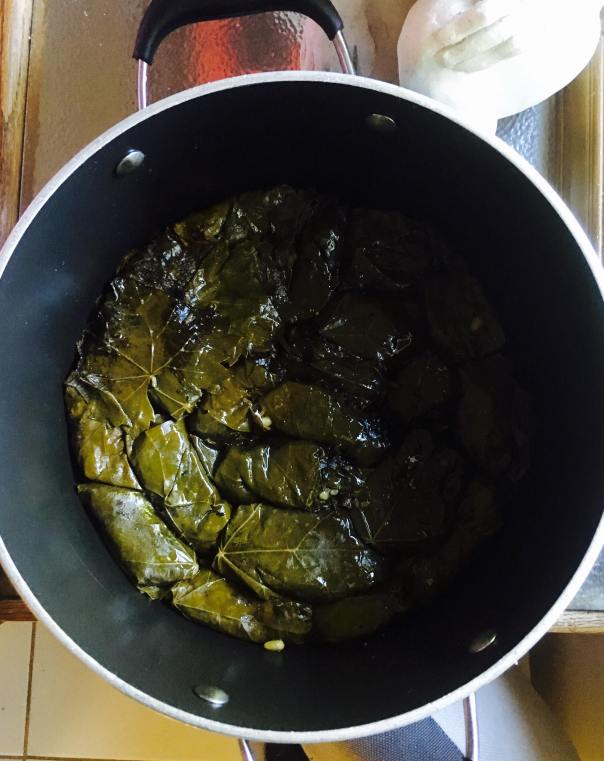 Dolma in the pot